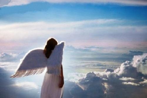 ángel humano